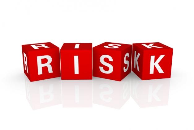security risk management essay